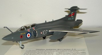 Leigh's Buccaneer, you can't have too many Buc's
