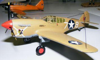 Rod's P-40 1