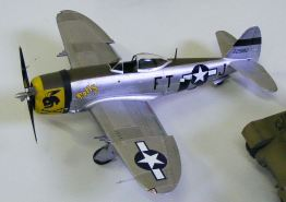 Jason's P-47 port view
