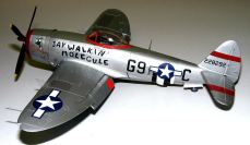Wayne's P-47 Jat Walkin' Molecule