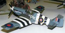 Wayne's P-51B Polish Sqn.