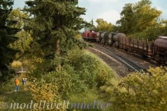Güterzug am Badesee