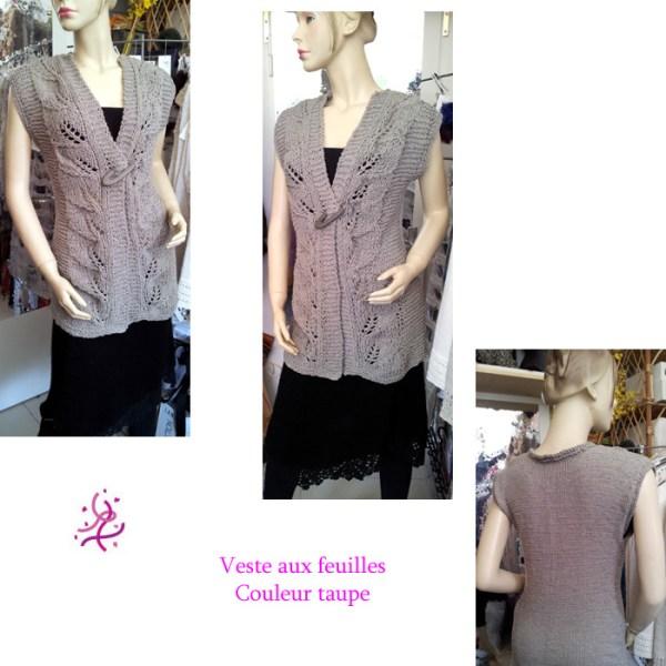 Vous cherchez une élégante veste légère et sans manche pour l'été? Alors la veste aux feuilles est pour vous!