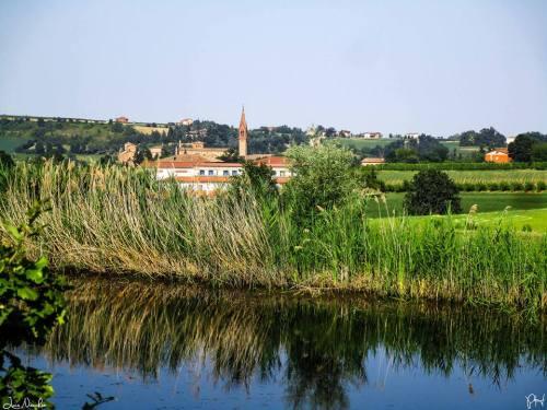 Panorama Castelvetro di Modena - Foto Luca Nacchio