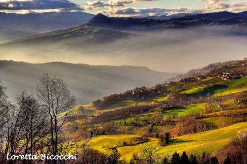 Valli di Montese - Verdi