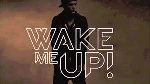 """Avicii """"Wake Me Up"""" Is it House or Bluegrass?"""
