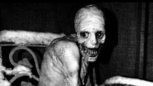 WTF: Russian Sleep Experiment