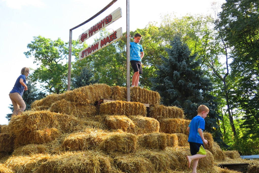 Can you handle the cuteness of this Haunted Straw Maze...so much fun and all the kids love going every year.