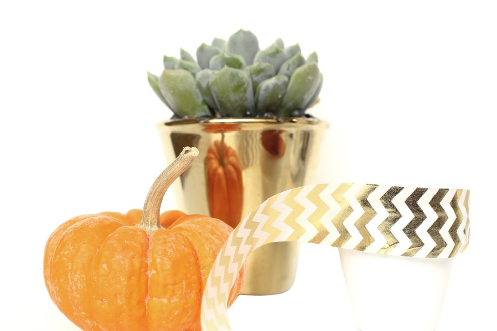 Fall Party Favors