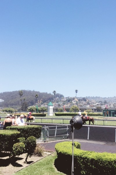 A Day At The Races: Where To Find $1 Mimosas & Watch Live Horse Racing In Northern California