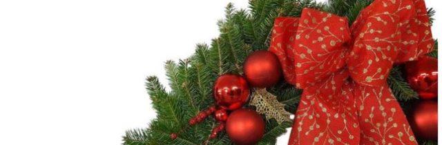 25% off Hilltop Christmas Tree Farms