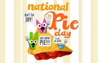 National Pi Day