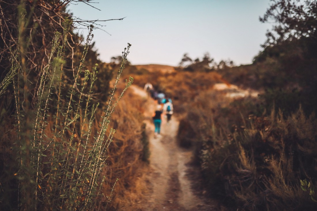 California Vacation Ideas for a Momcation in Orange County by popular Nashville travel blog, Modern Day Moguls: image of a hiking trail.