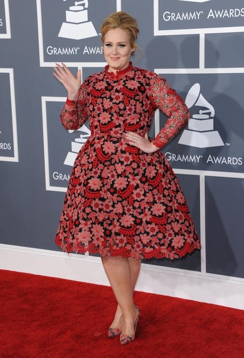 2013 Grammy Awards [USA ONLY]