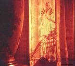 Day 230 - Redscale lamp and window