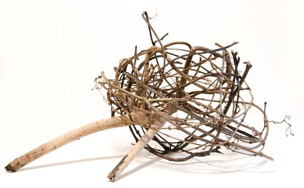 Ross Belton Nest 4