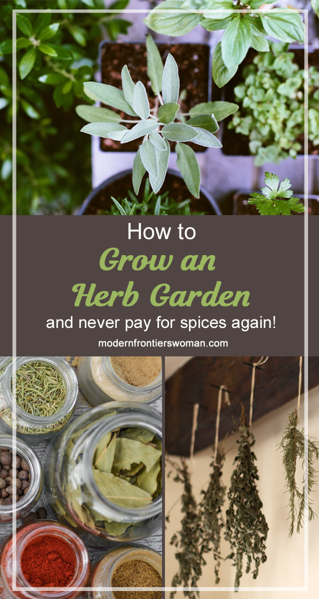 How to grow an herb garden (and never pay for spices again!)