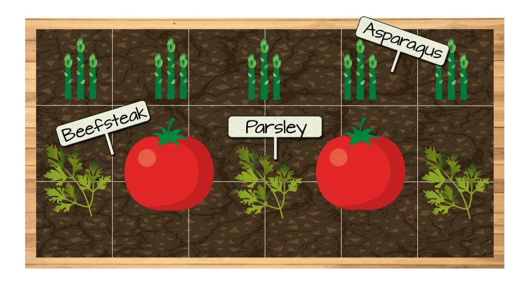 Raised Bed 1 - Parsley, Beefsteak Tomatoes, and Asparagus
