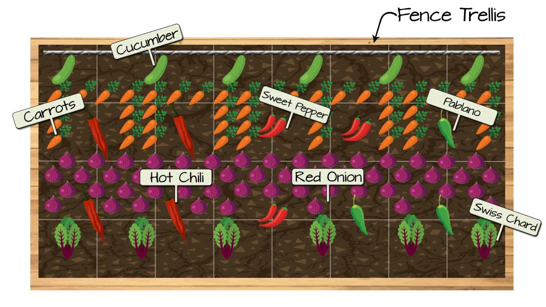 Raised Bed 12 - Cucumber, Carrots, Sweet Pepper, Pablano Pepper, Hot Chili Pepper, Red Onion, and Swiss Chard