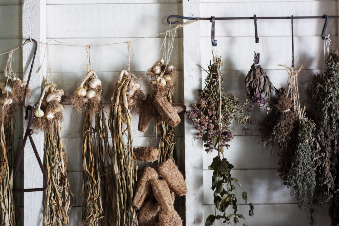 Hanging herbs vegetables garlic air drying