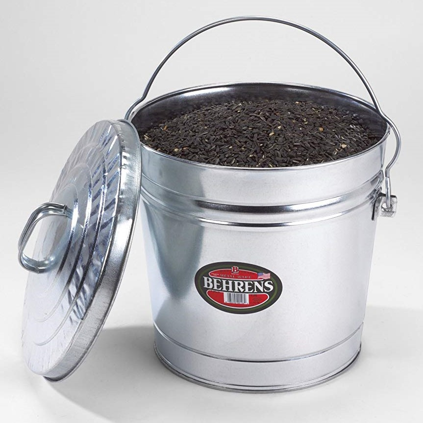 6 Gallon Metal Bucket with Lid and dirt (2)