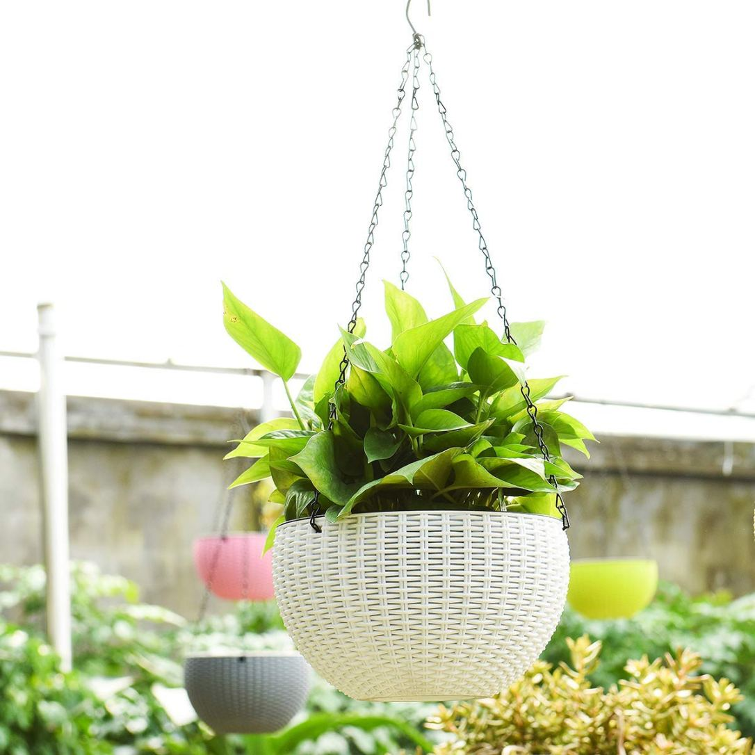 Hanging basket self watering