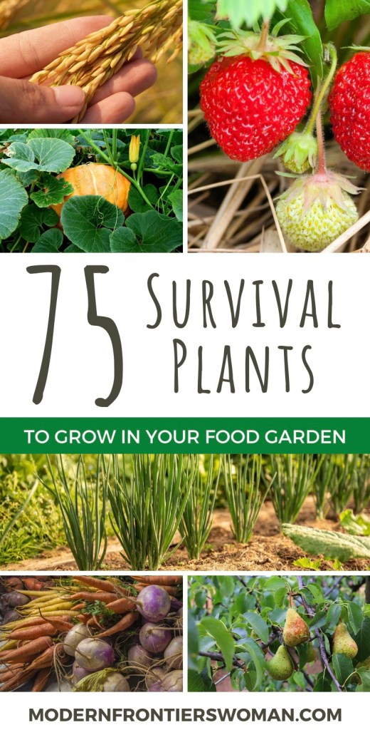 75 Survival plants to grow in Your Food Garden