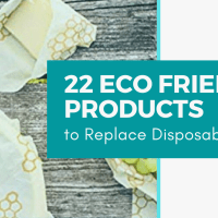 22 Eco Friendly Products to Replace Disposables and Save you Thousands a Year!