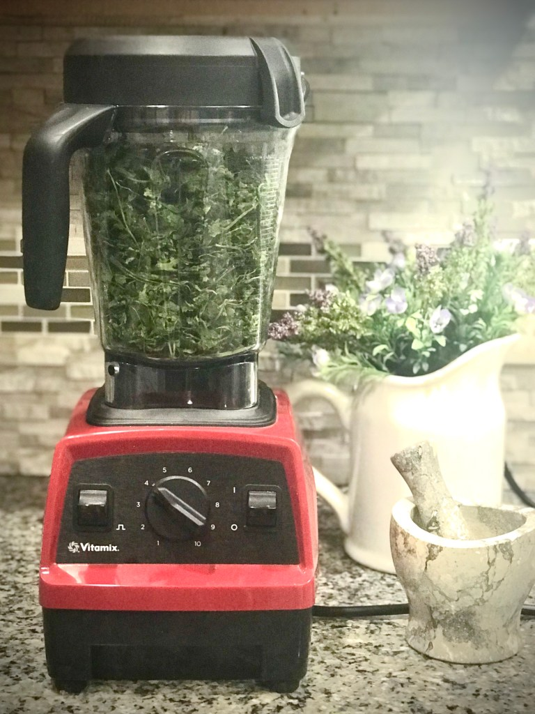 Cilantro in blender