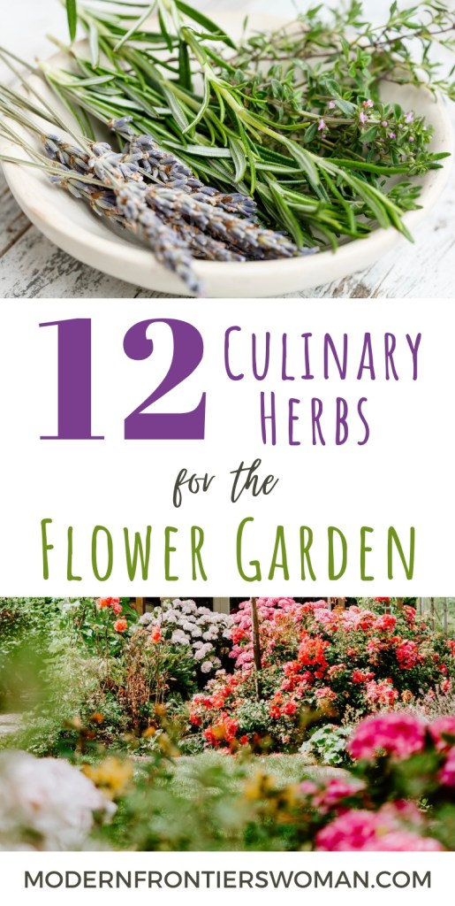 12 Culinary Herbs for the Flower Garden
