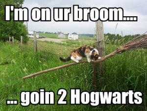 im-on-ur-broom-goin-2-hogwarts