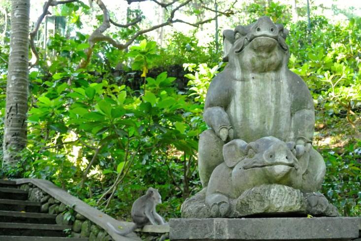 Bali Affen