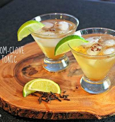 Cardamom and Clove Gin and Tonic