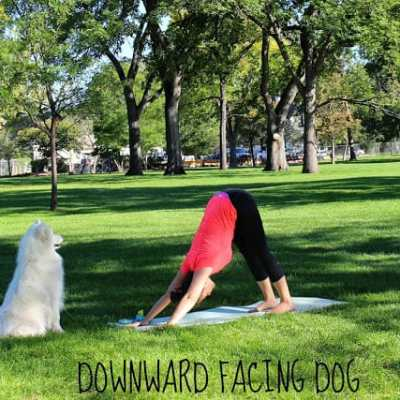 Five Foundational Yoga Poses