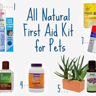 All Natural First Aid Kit for Pets