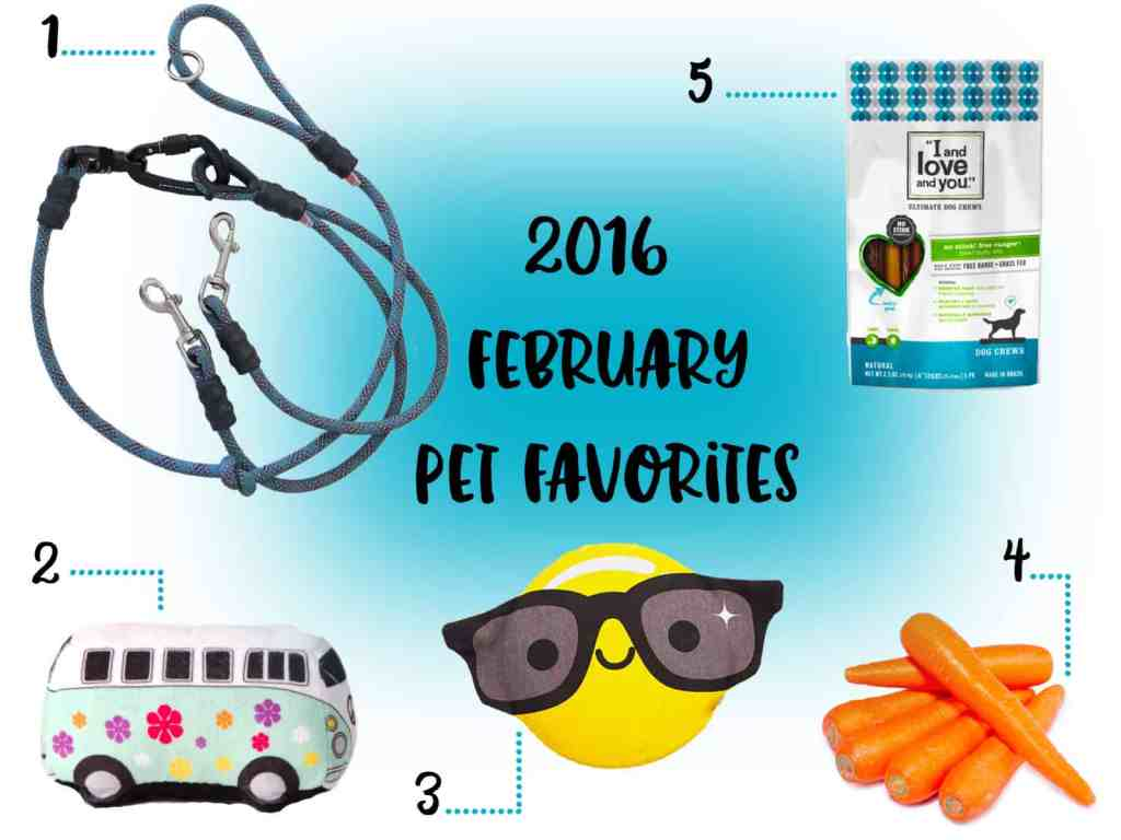 2016 February Pet Favorites