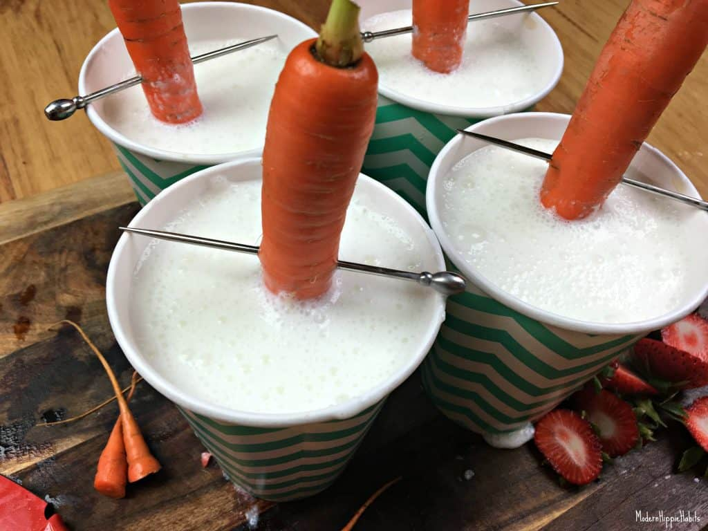Berry PUPsicle Carrot Handle
