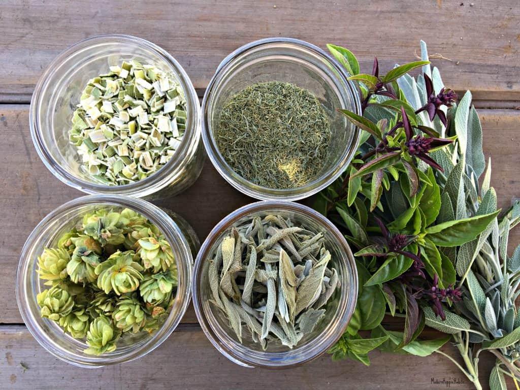 Dehydrating Basics Herbs