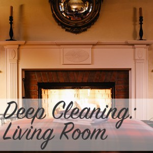 Deep Cleaning: Living Room | Modern Home Economics