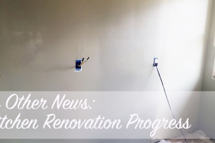 In Other News - Kitchen Renovation Progress
