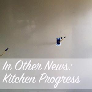 In Other News: Kitchen Progress | Modern Home Economics