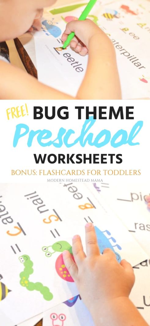 Bug Theme Preschool Worksheets