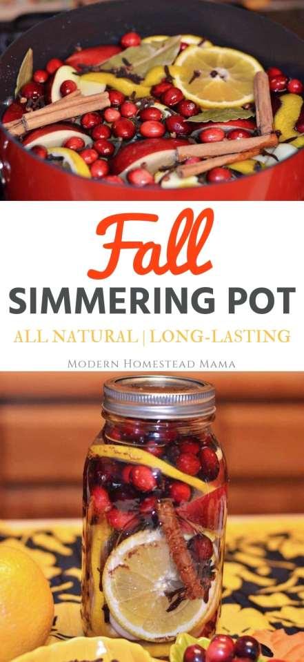Fall Simmering Pot - All Natural and Long-Lasting