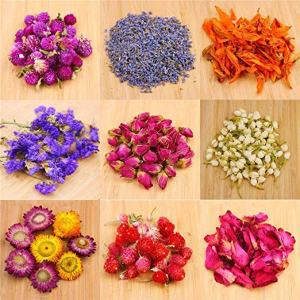 Dried Flowers For Crafting