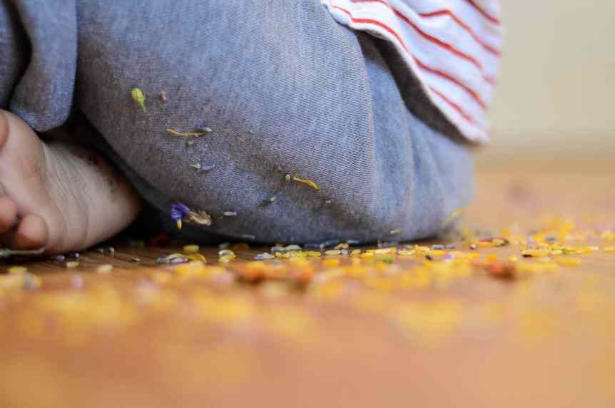 Floral Sensory Bin on Toddler's Pants