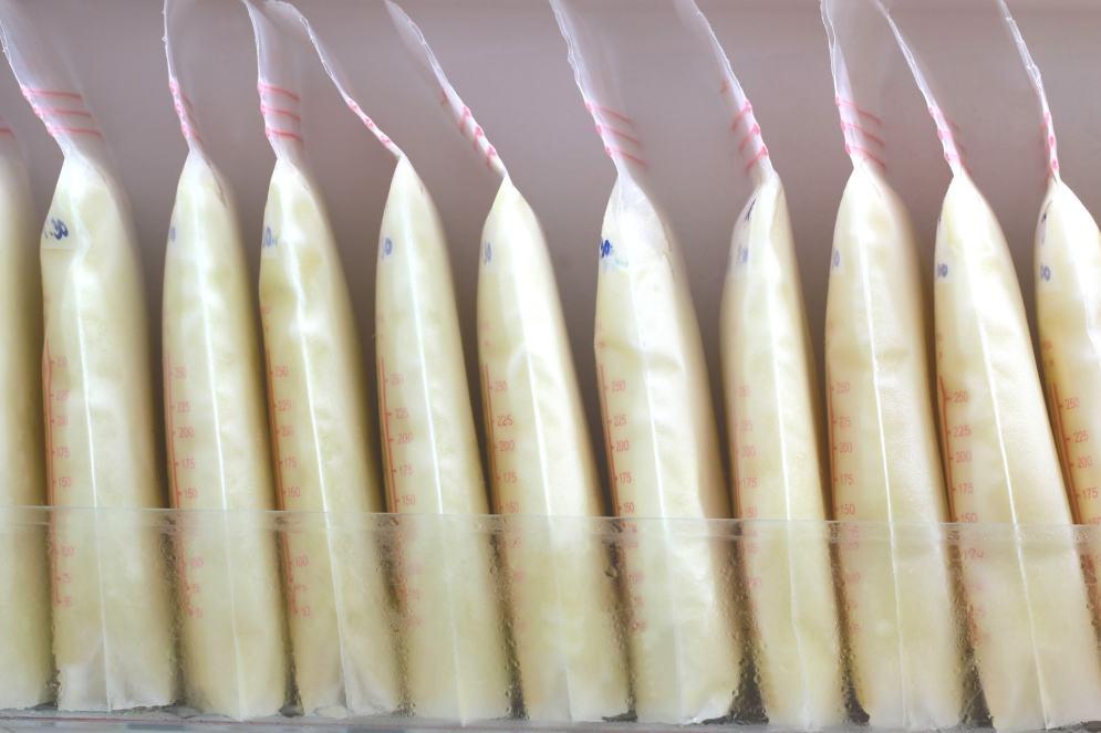 Breast Milk Freezer Stash - Pumped Breast Milk Bags