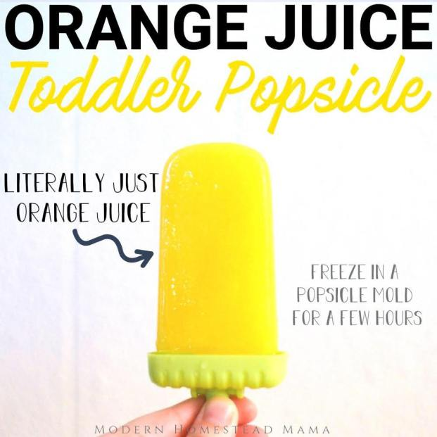 Orange Juice Popsicle