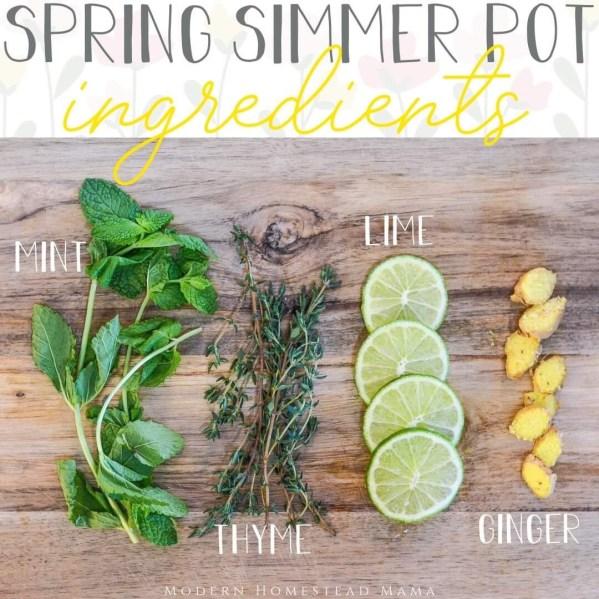 Simmer Pot Recipes for Spring - Lime Mint Thyme Ginger