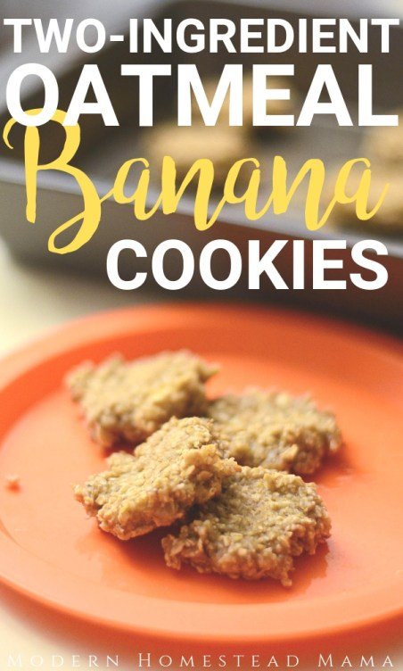 Two Ingredient Oatmeal Banana Cookies For Toddlers   Modern Homestead Mama