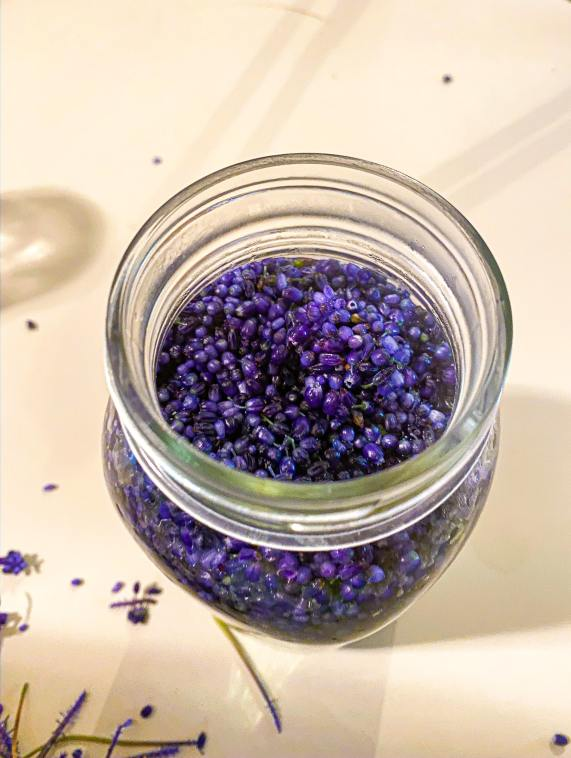 Grape hyacinth water infusion for simple syrup